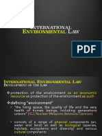 International-Environmental-Law.pdf