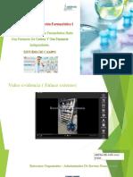 organizacion far. estudio de campo FINAL.pdf