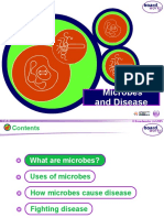 Microbes-and-Disease