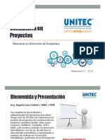 2019 0828 Consultoria Proyectos v4.pdf