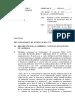 Informe Proteccion ESTAY MERTENS ROL N° 172697 - 2019.docx