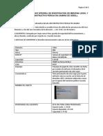 DICTAMEN INFORMATICO.docx