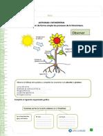 articles-19432_recurso_doc (3).doc