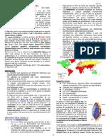 6. HEPATITIS DRA. AJATA.pdf