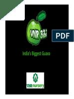 thai guava production pdf by VNR