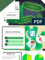 Diapositivas Agentes Patogenos