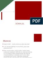 SOMAJUL.pdf