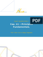 Super Apostila otimaaa - Princípios Fundamentais v2 (1).pdf