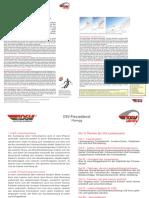 1201_DSV_FdS_PD_SIS_Lawinenserie_05_Lawinenausloesung_Faktoren