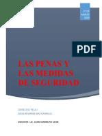 LAS PENAS Y MEDIDAS DE SEGURIDAD(2) (1).docx
