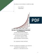 Pre informe Flujo crítico..docx