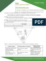 1-rotacao-de-culturas-em-hortalicas.pdf
