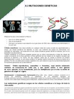 GUIA 2 MUTACIONES GENETICAS grado 9