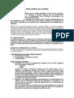 TEORIA GENERAL DE LA PRUEBA y recursos