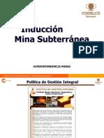 INDUCCIÓN MINA SUBTERRÁNEA