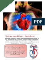 sistema circulatório 2.pdf