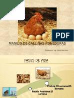 clase de Manejo de gallinas ponedoras.pdf