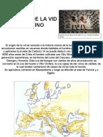 HISTORIA DE LA VID-VINO.ppt
