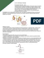 Resumo AV1 e AV2 - Embriologia e Histologia