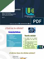 Células.pdf