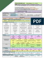 Protocolo y testaje Biocom Lux