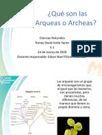 Archeas