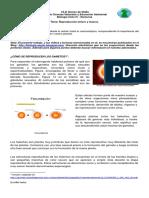Reproducción Celular Meiosis - Ciclo 4 - 1P