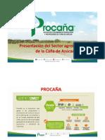 Presentacion del sector pag web 2018.pdf
