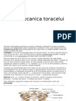 Biomecanica-  Torace