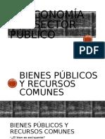7.-La economía del sector público-Bienes Publicos y Recursos Comunes