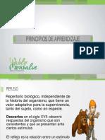 PRINCIPIOS DE APRENDIZAJE