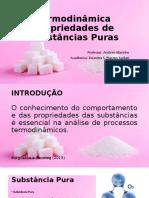 Termodinâmica sub pura apresentação.pptx