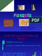fosseis_1