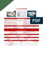 4.8-TS-Cuttlefish-en