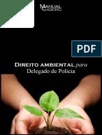 Manual Caseiro - DIREITO AMBIENTAL 2020.1.pdf