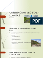 CONTENCIÓN VEGETAL Y LLANTAS