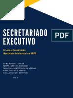 ebook-sec-exec-10-anos-v-final