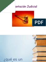 Argumentacion Judicial