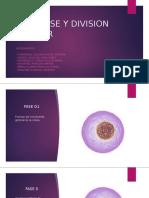 INTERFASE Y DIVISION CELULAR.pptx