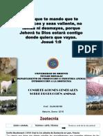 CLASE CONS GENERALES ZOOTECNIA.pdf