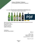 BM Plan Afaceri - URBB