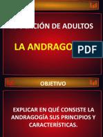 3 ANDRAGOGÍA
