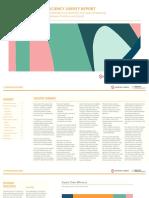 Production-Efficiency-Survey-Report