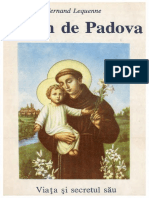 FERLEQ - ANTPAD pdf.pdf