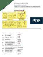 Правописание суффиксов прилагательных.pdf