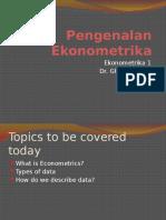 Introducing Ekonometrika