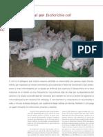 Cys_34_56-58_Diarrea Neonatal Por Escherichia Coli