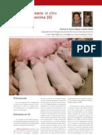 Cys_34_60-65_Cultivo Embrionario in Vitro en La Especie Porcina (II)