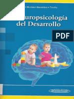Neuropsicología del Desarrollo [Arnedo]
