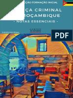 eb_JusticaCriminal_Mocambique.pdf